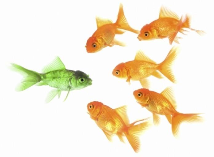 Подготовка к собеседованию. Поиск ключа к успеху