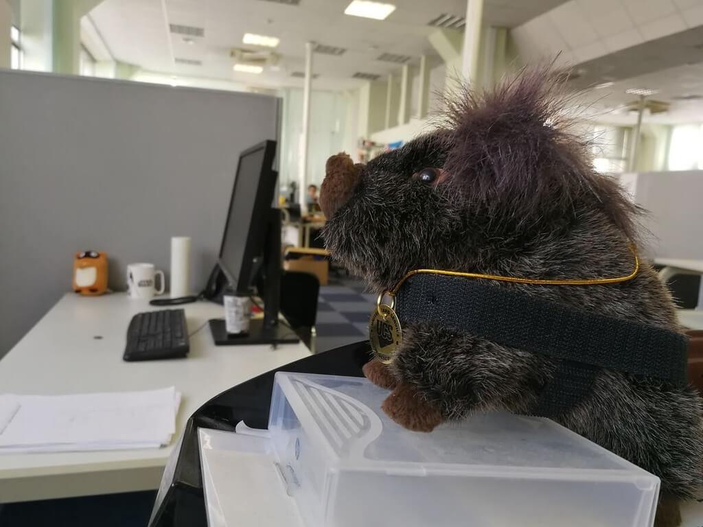 Комфортный и стильный офис — это прихоть или необходимость? Кейс компании «Инфосистемы Джет»