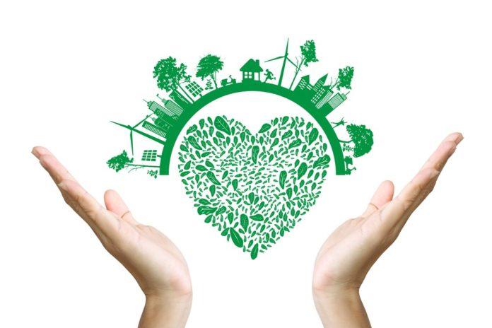 Эко-политика как часть корпоративной культуры